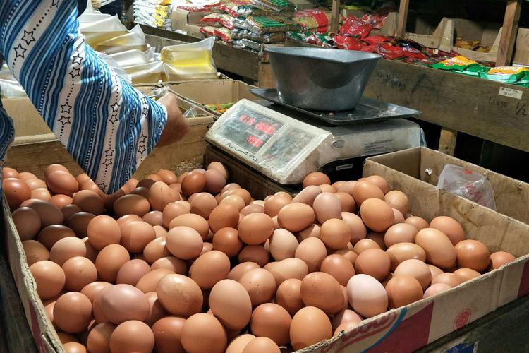 Harga Telur di Malaysia